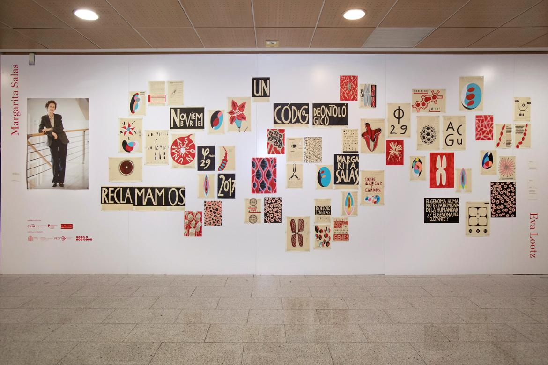 Exposición de Eva Lootz